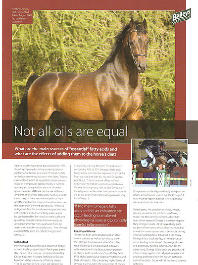 Aimbry Chester Features in Baileys Horse Feeds advertising